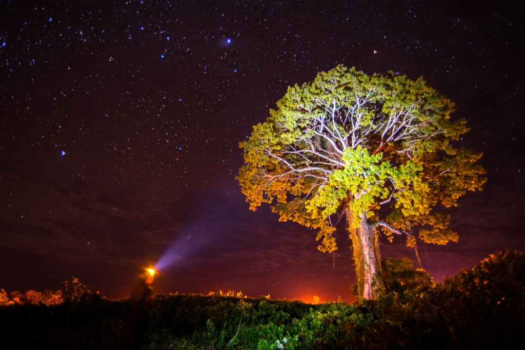 TIMIT Night Photography